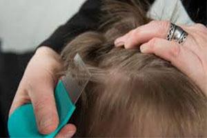 Jak skutecznie chronić dziecko przed wszawicą?
